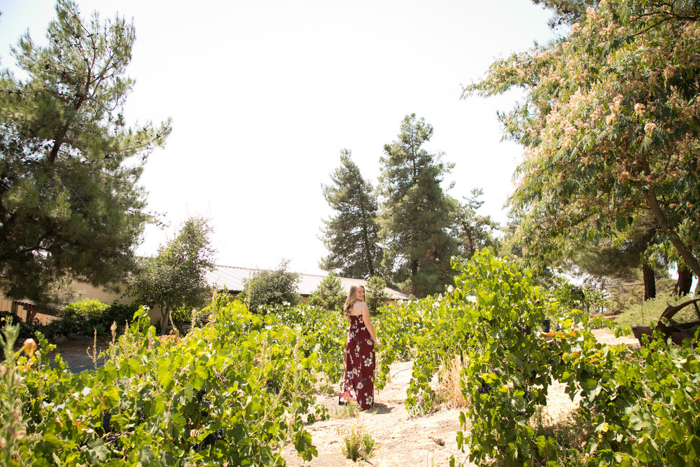 Paso Robles Senior Photographer Still Waters Vineyards  011.jpg