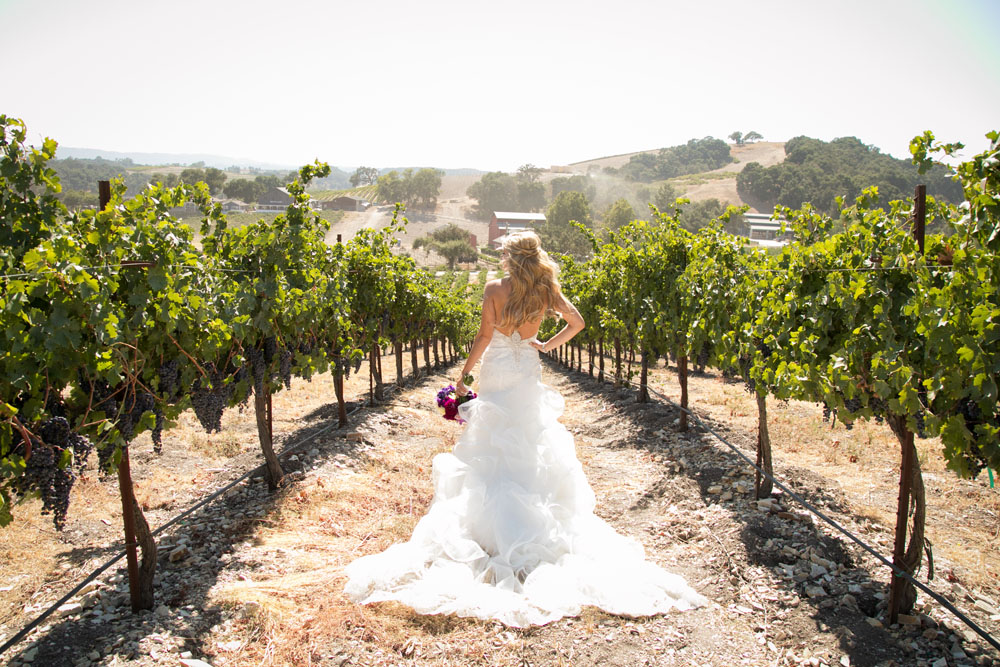 Paso Robles Wedding Photographer Tooth and Nail Winery 023.jpg