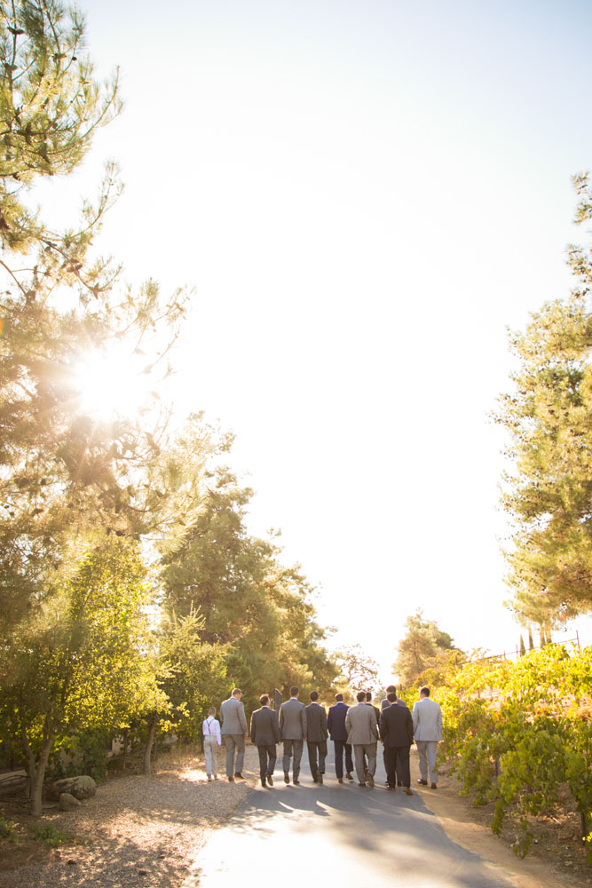 Paso Robles Wedding Photographer Still Waters Vineyard  045.jpg