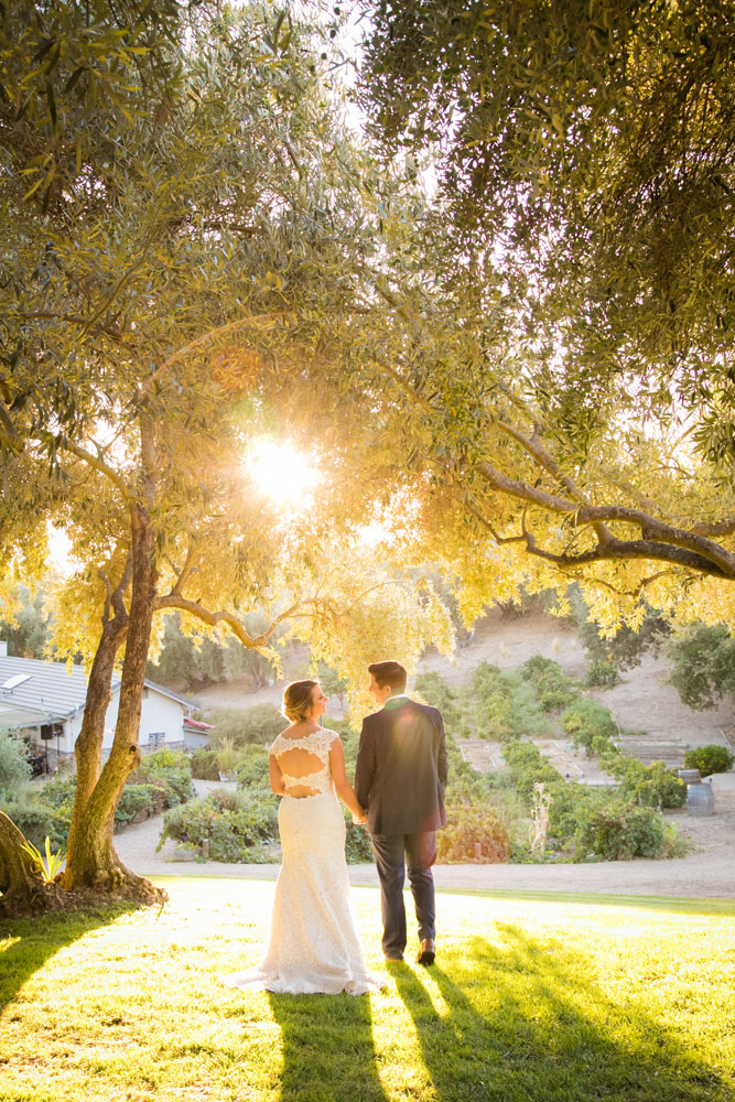 Paso Robles Wedding Photographer Still Waters Vineyard  094.jpg