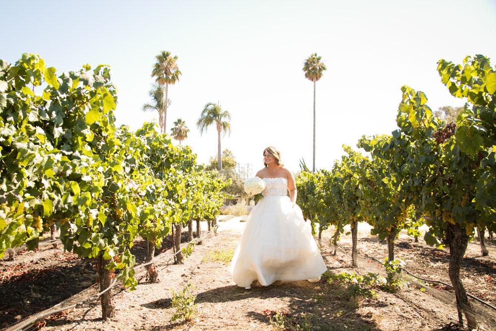 San Luis Obispo Wedding Photographer Biddle Ranch Vineyard 028.jpg