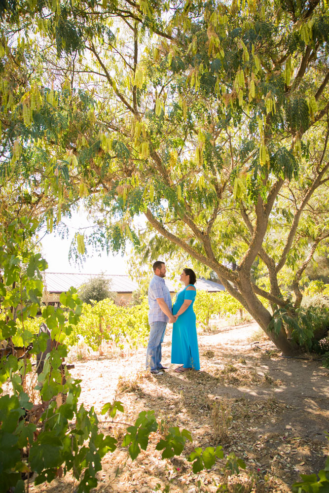 Paso Robles Family and Maternity Photographer Still Waters Vineyard 016.jpg