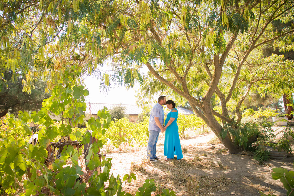 Paso Robles Family and Maternity Photographer Still Waters Vineyard 017.jpg