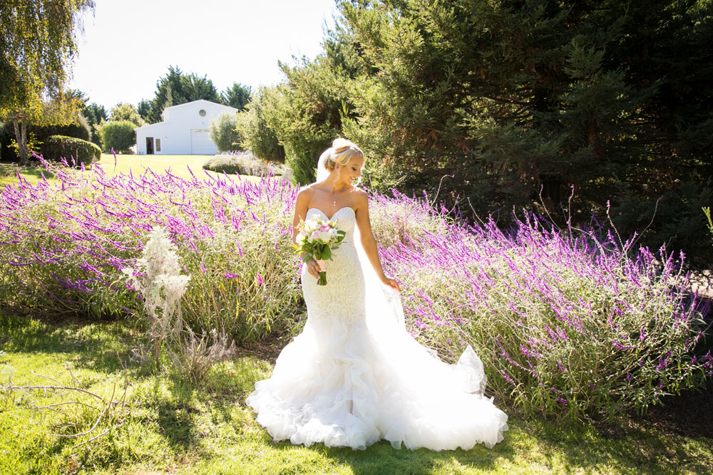 Arroyo Grande Wedding Photographer The Heritage Estate 018.jpg