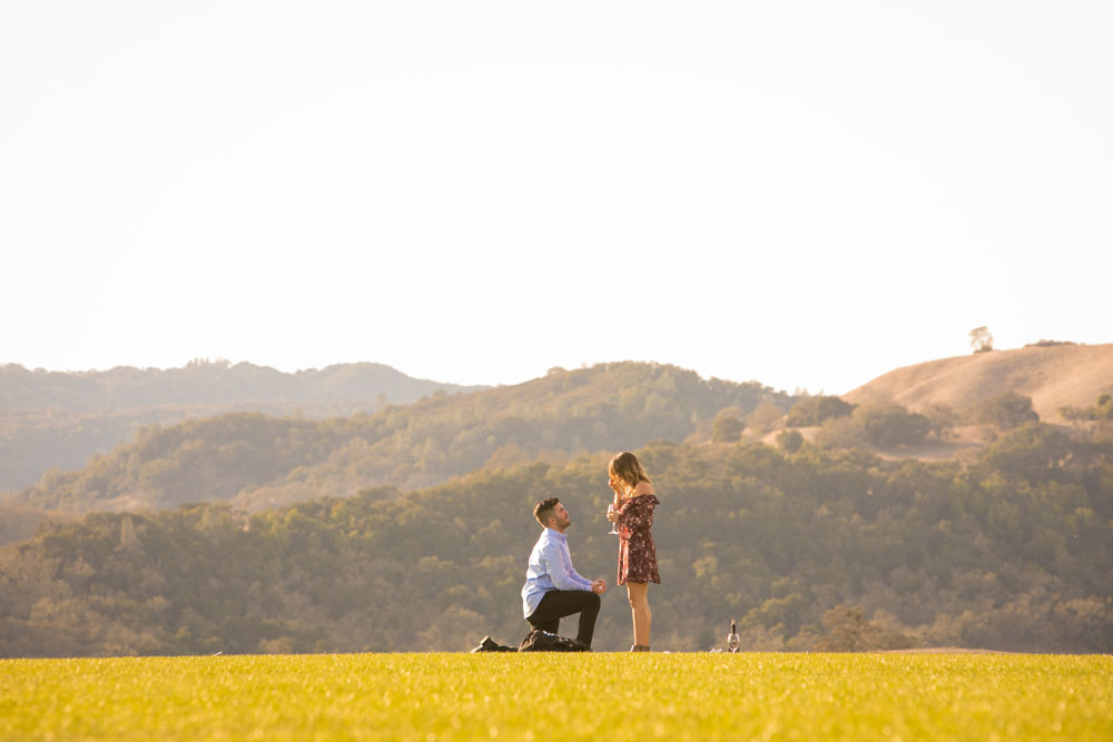 Paso Robles Proposal and Wedding Photographer Opolo Vineyards 008.jpg