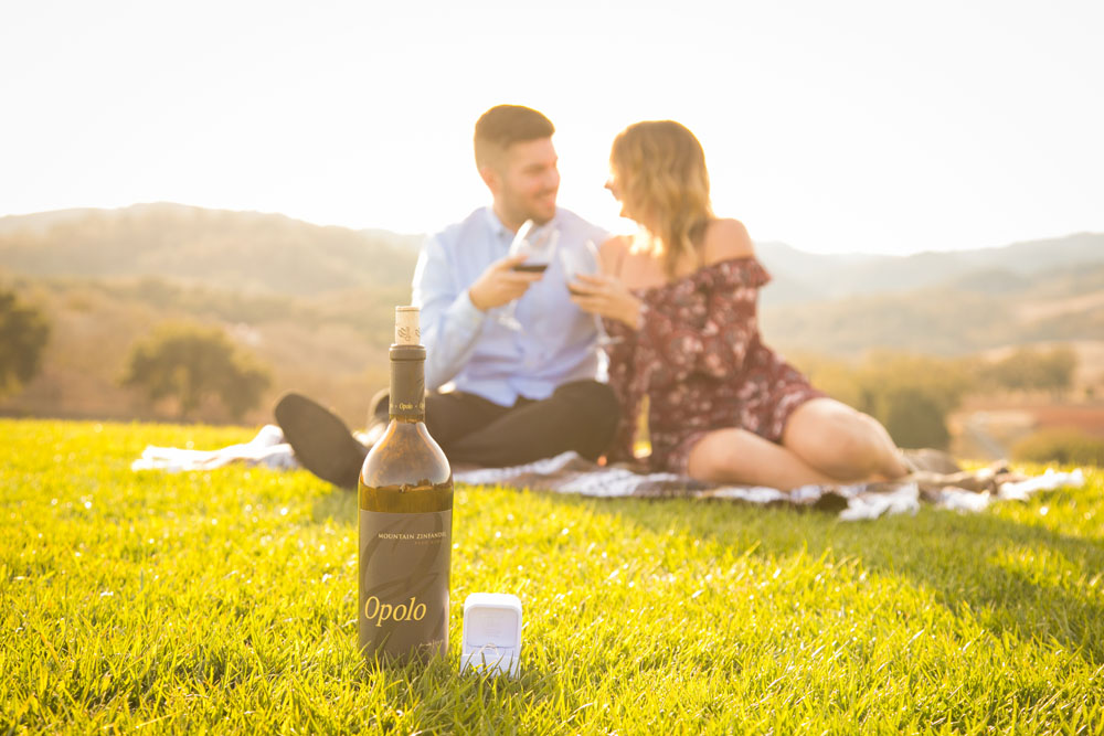 Paso Robles Proposal and Wedding Photographer Opolo Vineyards 050.jpg
