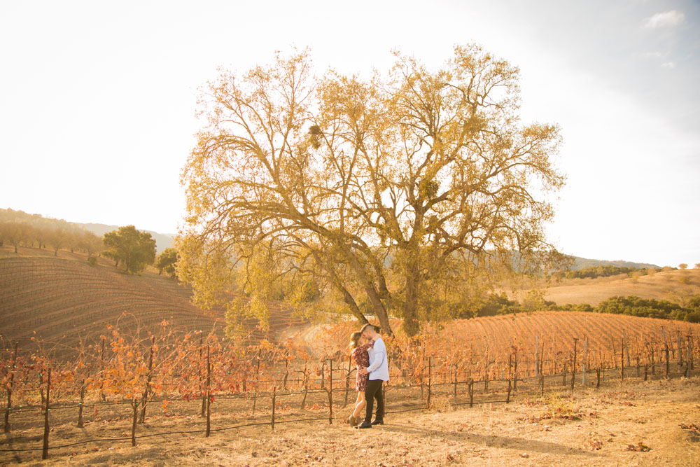Paso Robles Proposal and Wedding Photographer Opolo Vineyards 073.jpg