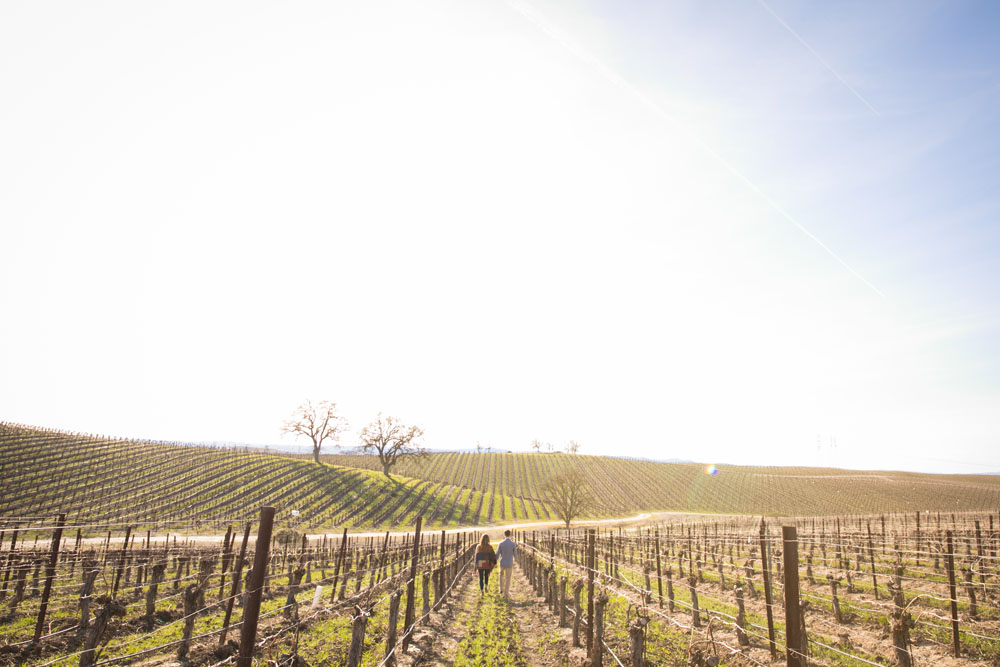 Paso Robles Wedding Photographer Vineyard Engagement Session 022.jpg