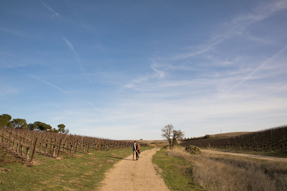 Paso Robles Wedding Photographer Vineyard Engagement Session 047.jpg