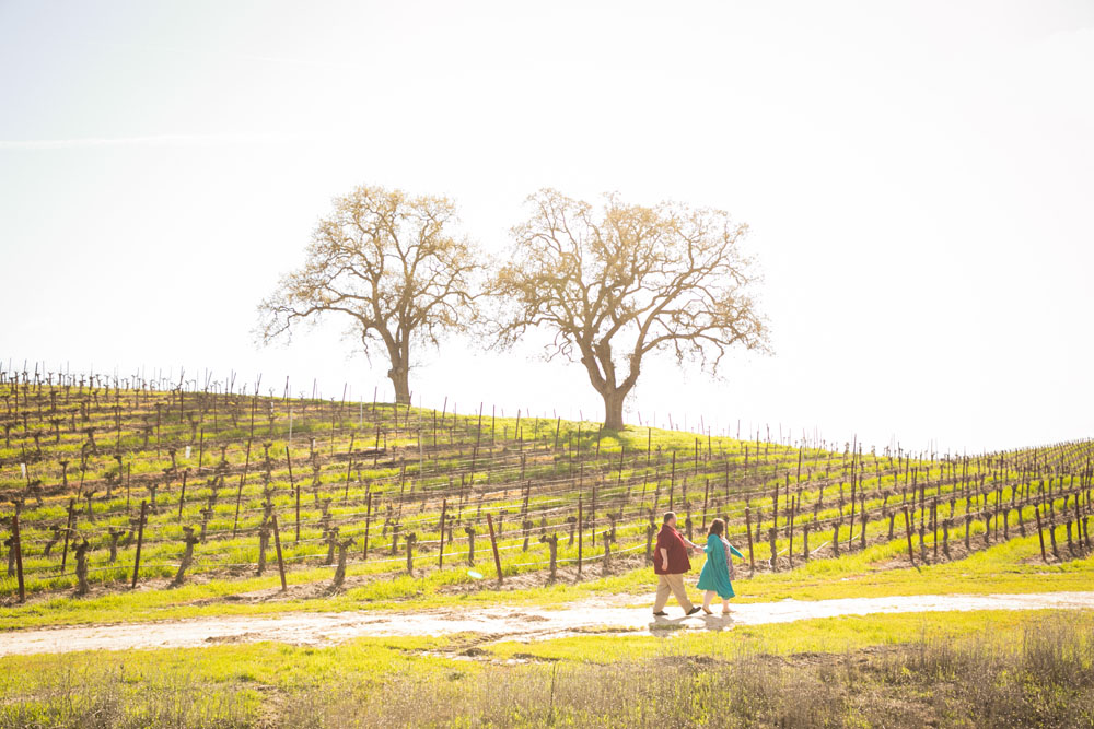 Paso Robles Wedding Photographer Vineyard Engagement Session 034.jpg