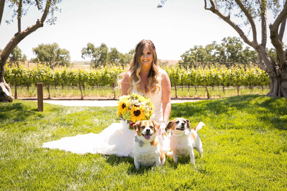 Paso Robles Wedding Photographer Rava Vines021.jpg