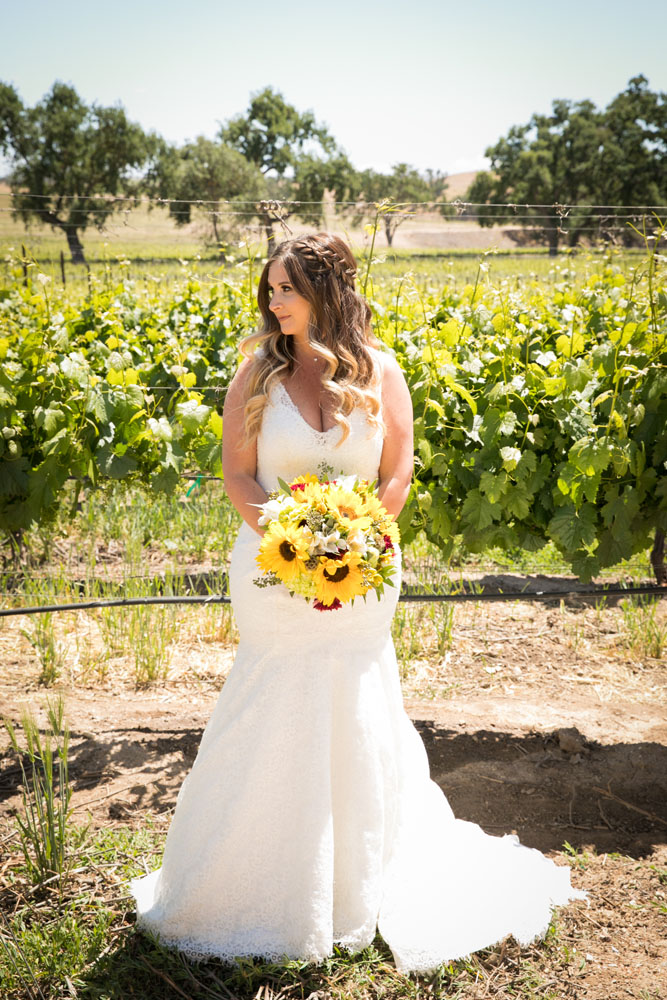 Paso Robles Wedding Photographer Rava Vines025.jpg
