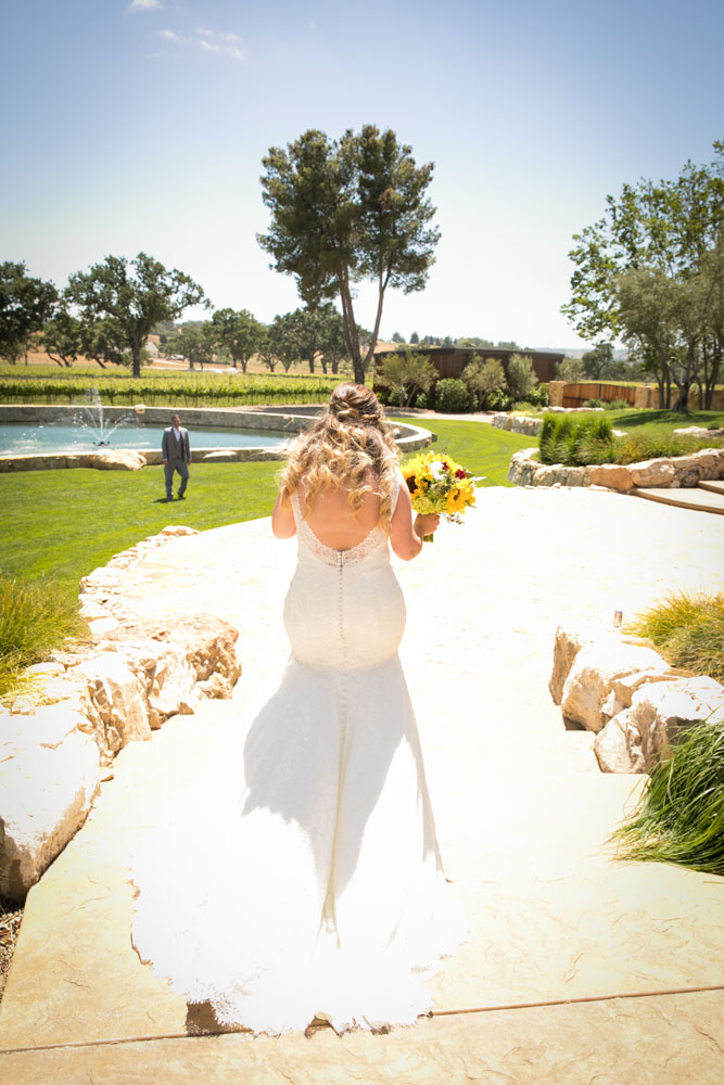Paso Robles Wedding Photographer Rava Vines037.jpg