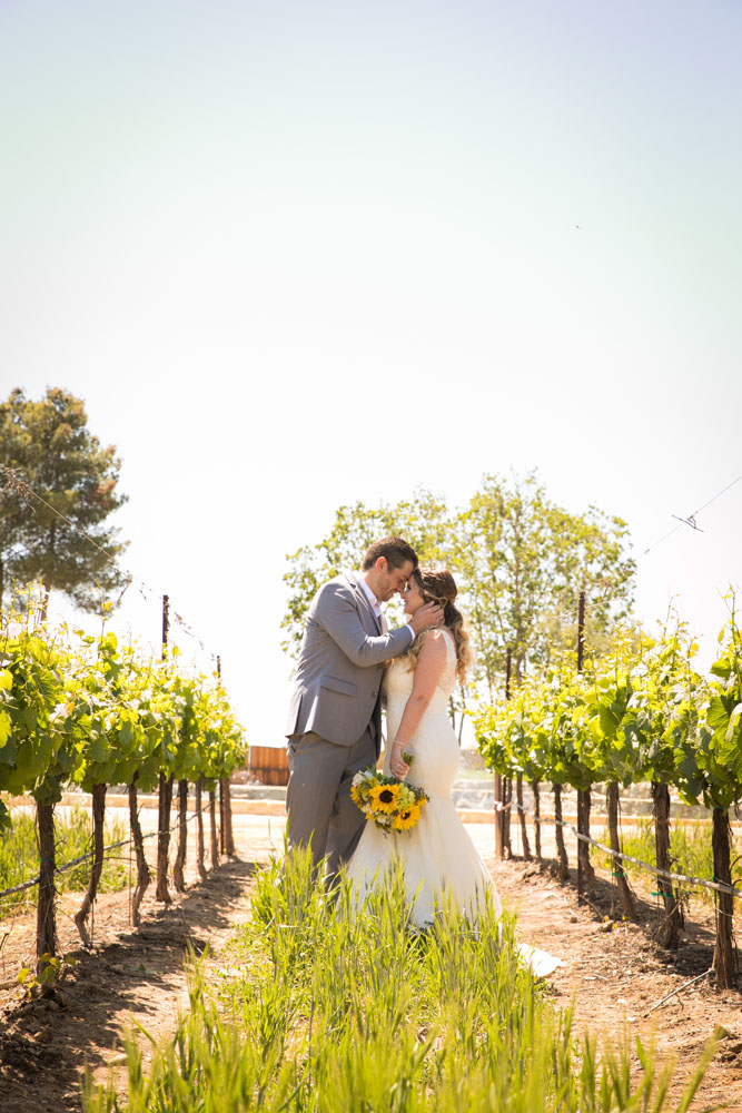 Paso Robles Wedding Photographer Rava Vines049.jpg