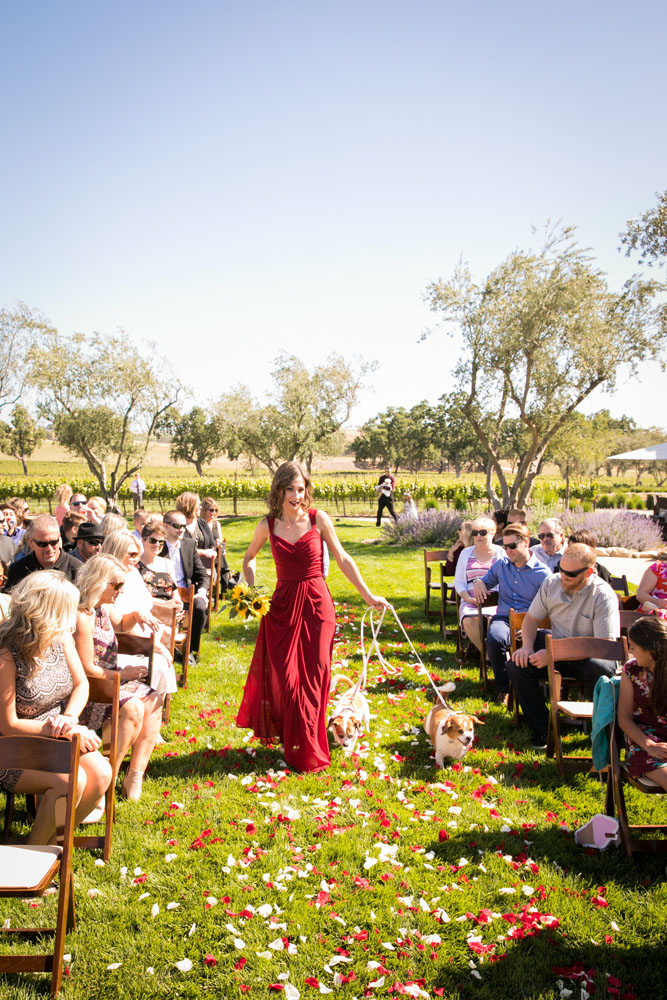 Paso Robles Wedding Photographer Rava Vines099.jpg