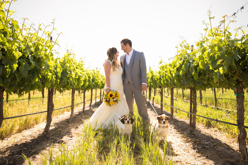 Paso Robles Wedding Photographer Rava Vines117.jpg