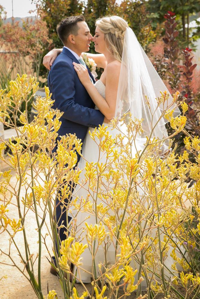 San Luis Obispo Wedding Photographer The White Barn 096.jpg