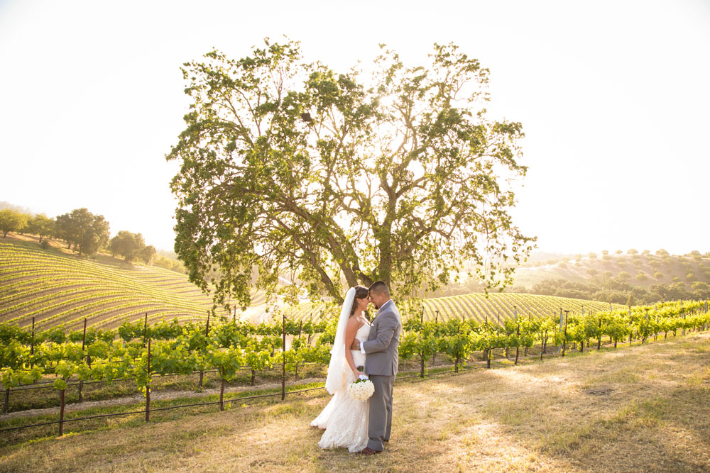 Opolo Vineyards Wedding