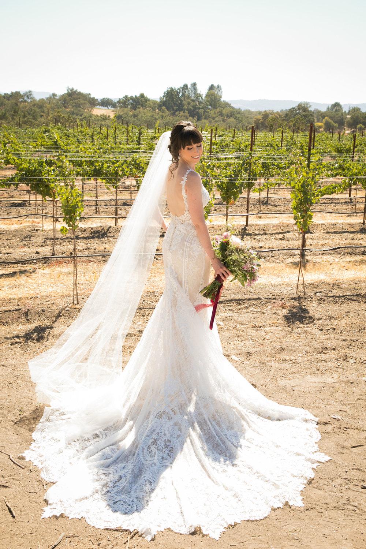 Paso Robles Wedding Photographer Arbor Oaks Vineyard 019.jpg