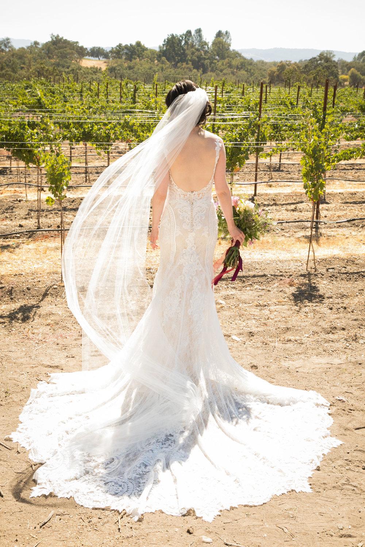 Paso Robles Wedding Photographer Arbor Oaks Vineyard 018.jpg