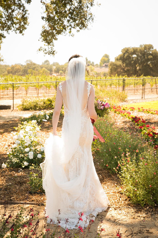 Paso Robles Wedding Photographer Arbor Oaks Vineyard 037.jpg