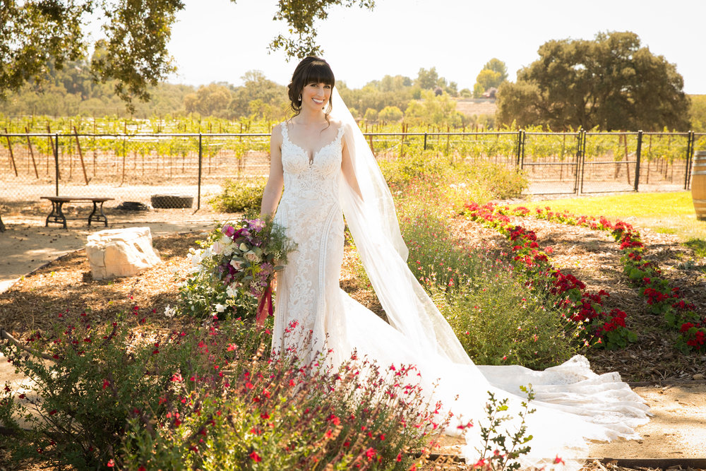 Paso Robles Wedding Photographer Arbor Oaks Vineyard 036.jpg