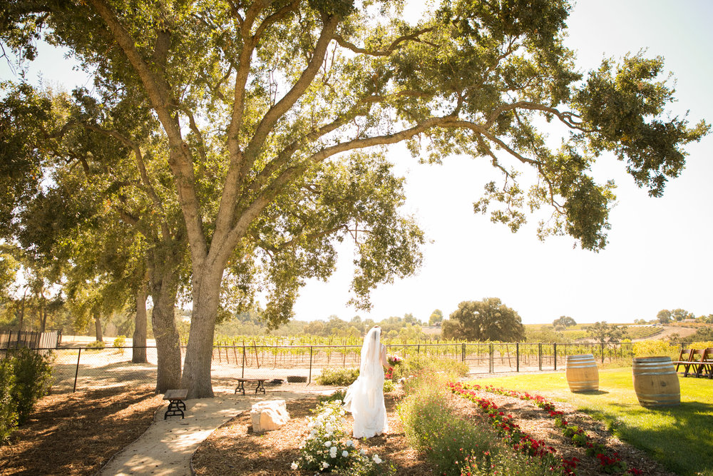 Paso Robles Wedding Photographer Arbor Oaks Vineyard 038.jpg