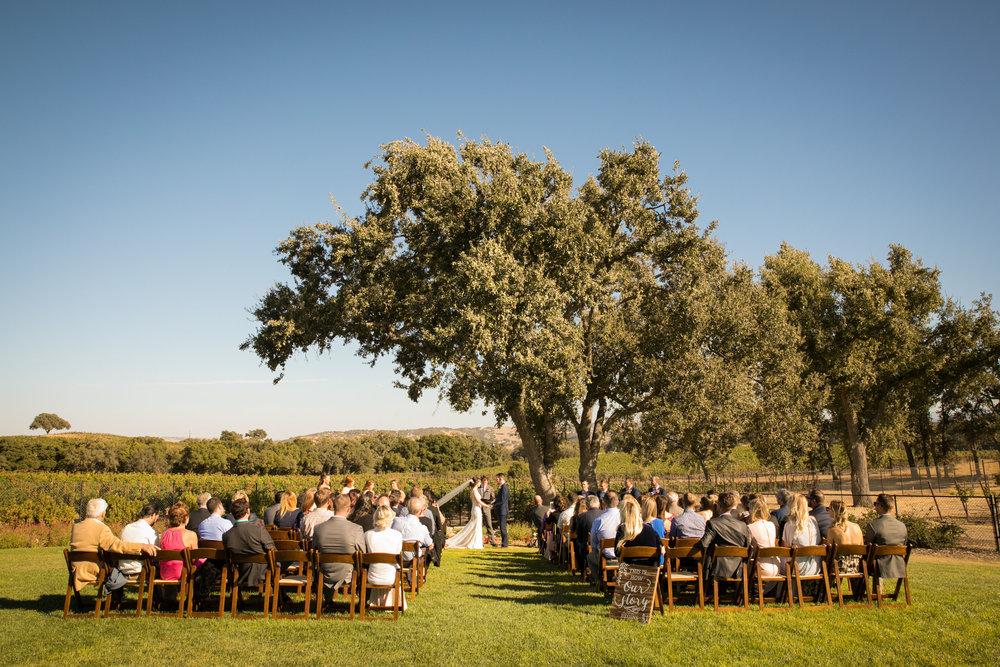 Paso Robles Wedding Photographer Arbor Oaks Vineyard 104.jpg