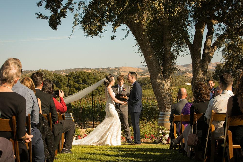 Paso Robles Wedding Photographer Arbor Oaks Vineyard 113.jpg