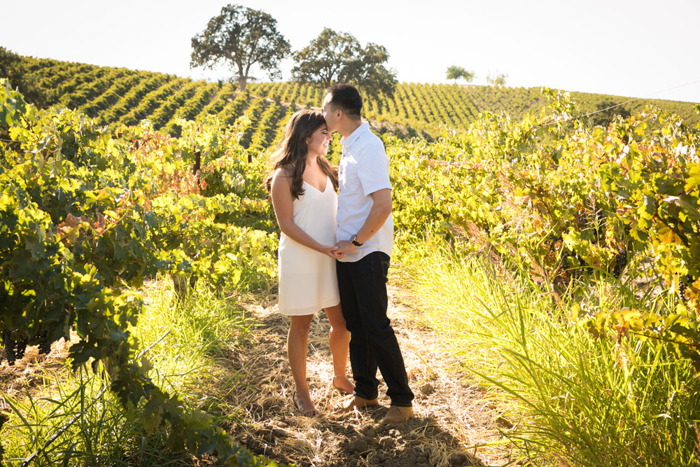 Paso Robles Wedding Photographer Vineyard Engagement Session 004.jpg