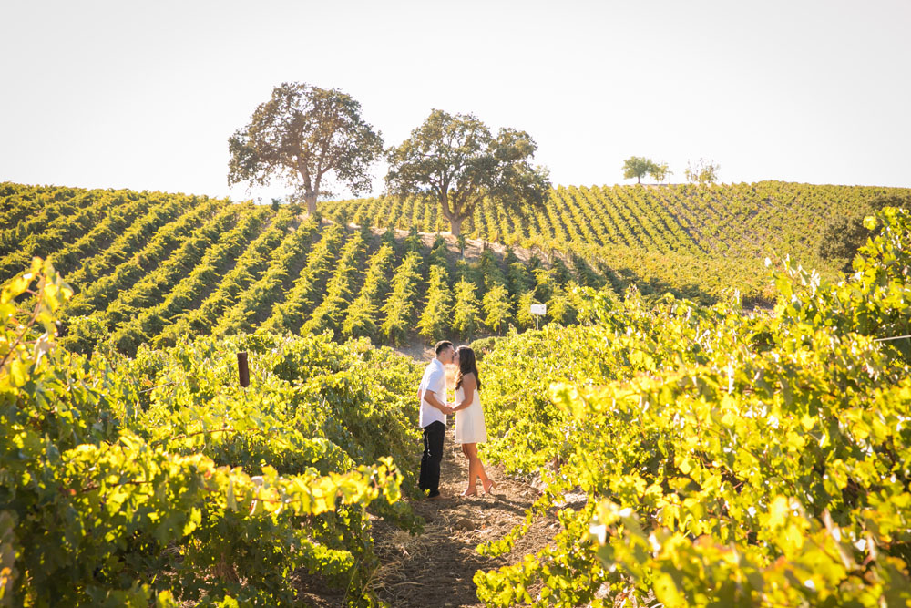 Paso Robles Wedding Photographer Vineyard Engagement Session 031.jpg