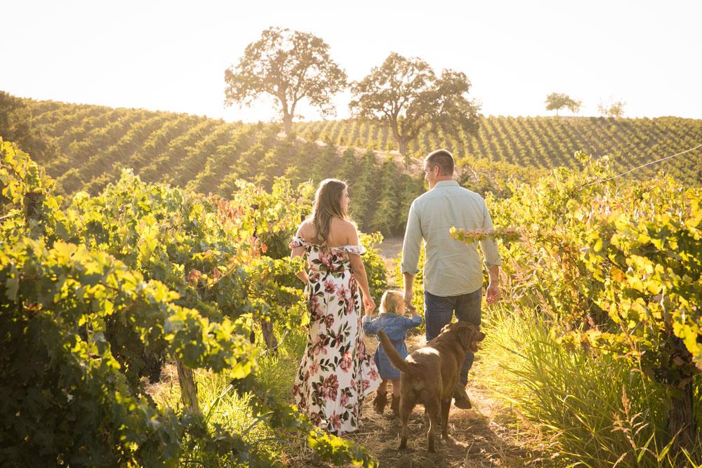 Paso Robles Family and Wedding Photographer Vineyard Family Portraits 001.jpg