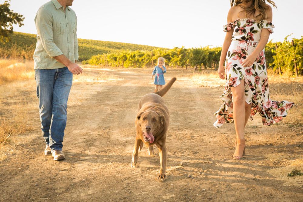 Paso Robles Family and Wedding Photographer Vineyard Family Portraits 054.jpg