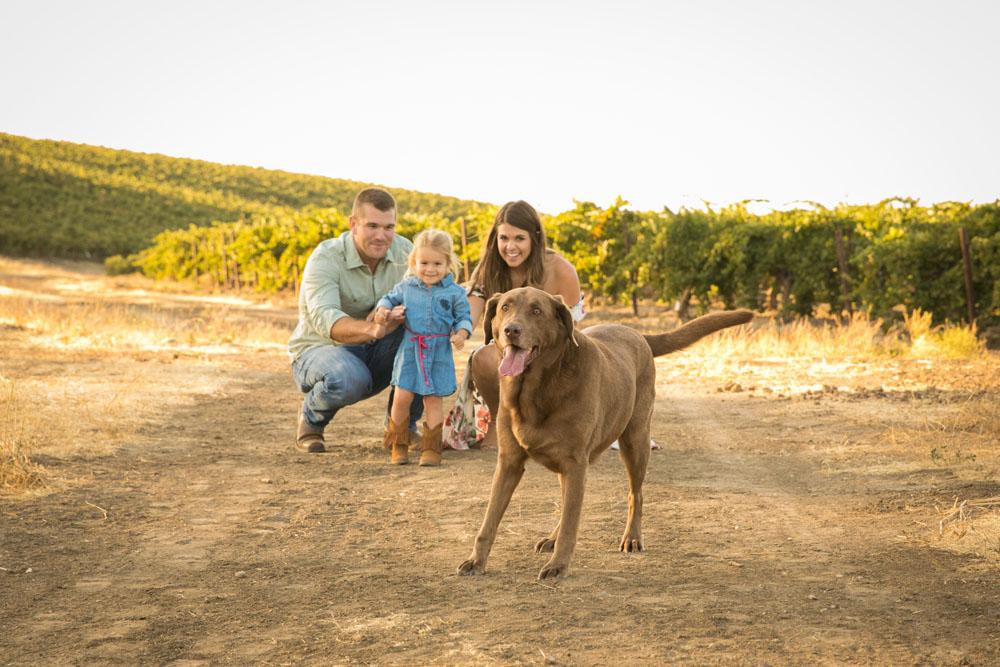 Paso Robles Family and Wedding Photographer Vineyard Family Portraits 066.jpg
