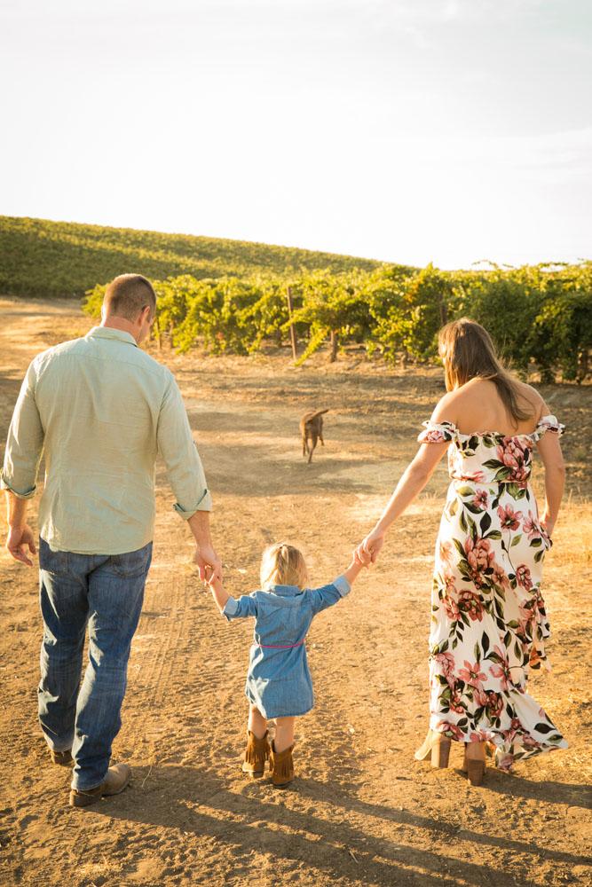 Paso Robles Family and Wedding Photographer Vineyard Family Portraits 070.jpg