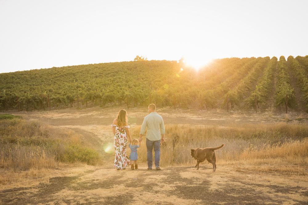 Paso Robles Family and Wedding Photographer Vineyard Family Portraits 073.jpg