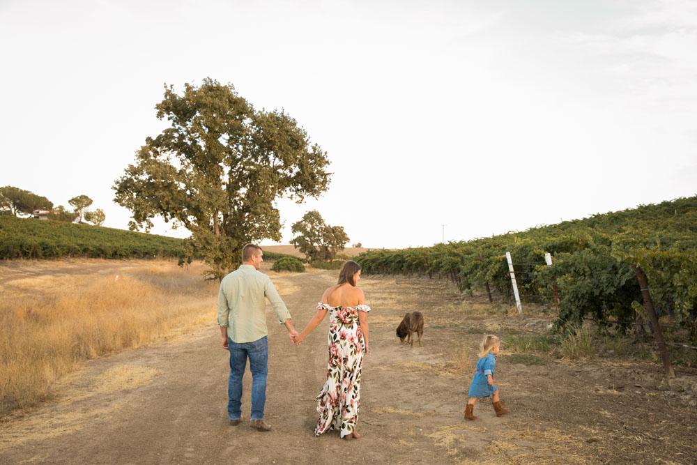 Paso Robles Family and Wedding Photographer Vineyard Family Portraits 098.jpg