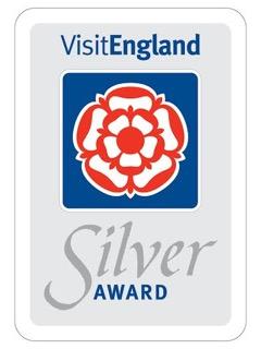 Silver Award.jpeg