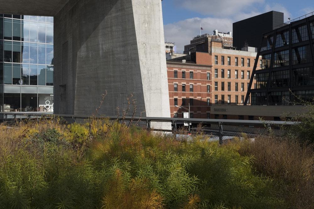 GJB_NYC_003.jpg