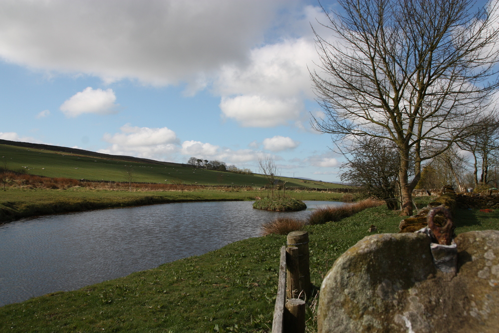 The pond at Saughy Rigg