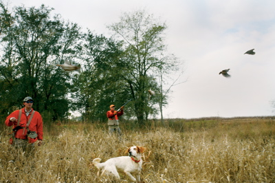 Father Son Quail Hunt.jpg