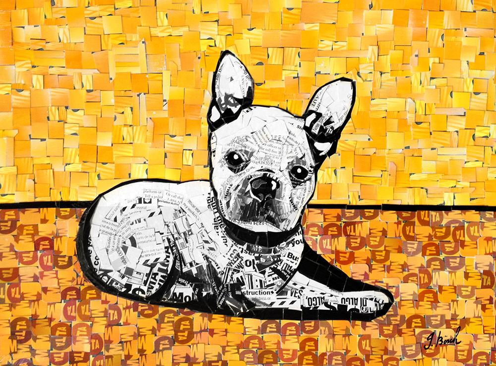 frenchBulldog.jpg
