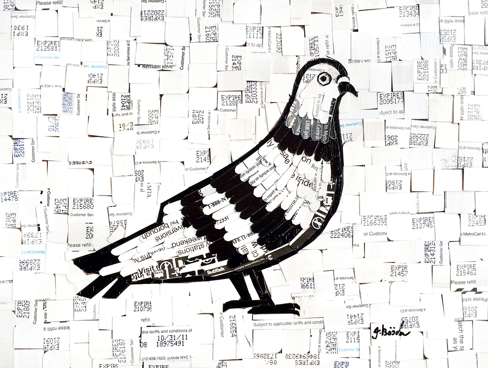 pigeon11x8.jpg