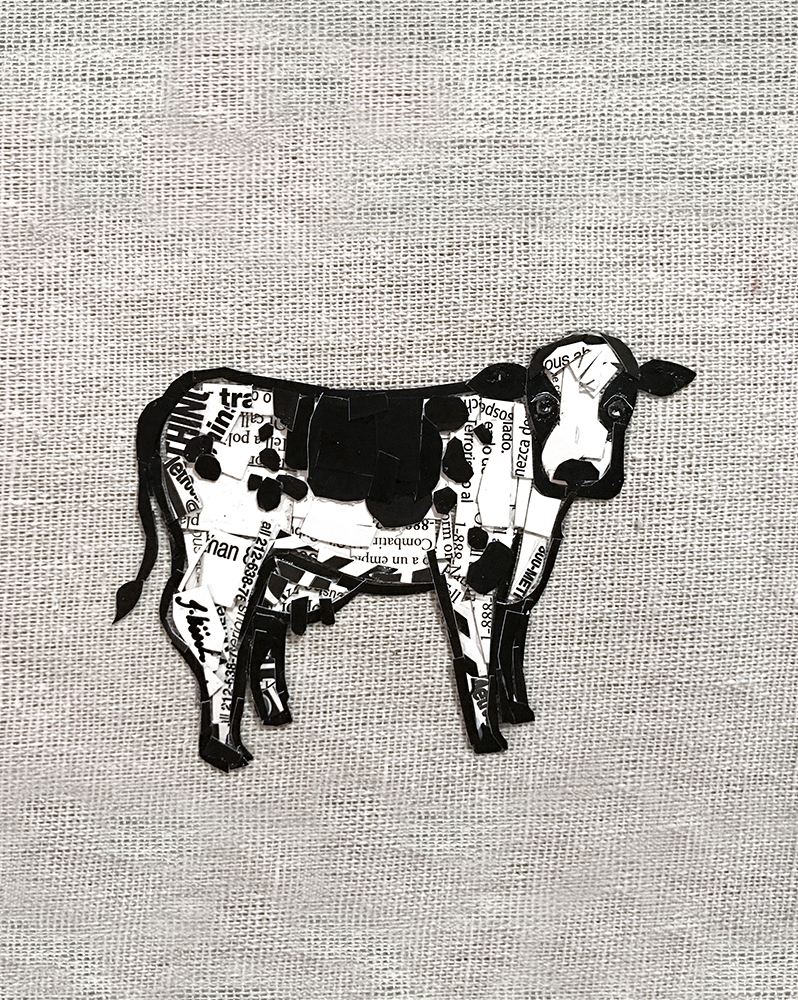 canvas_cow.jpg