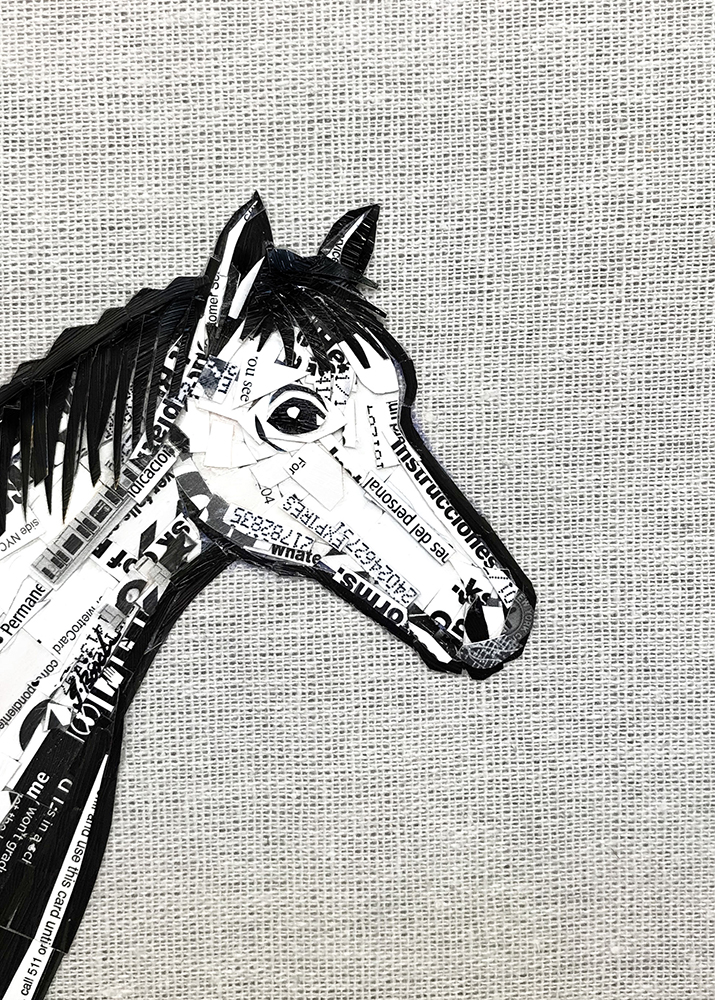 canvas_horse.jpg