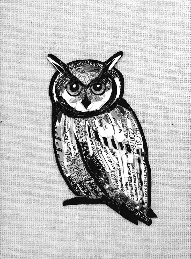 canvas_owl.jpg