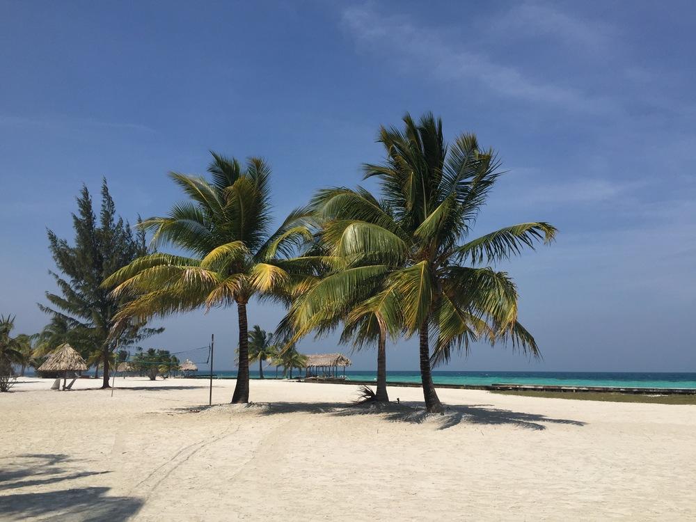 Royal Belize Beach