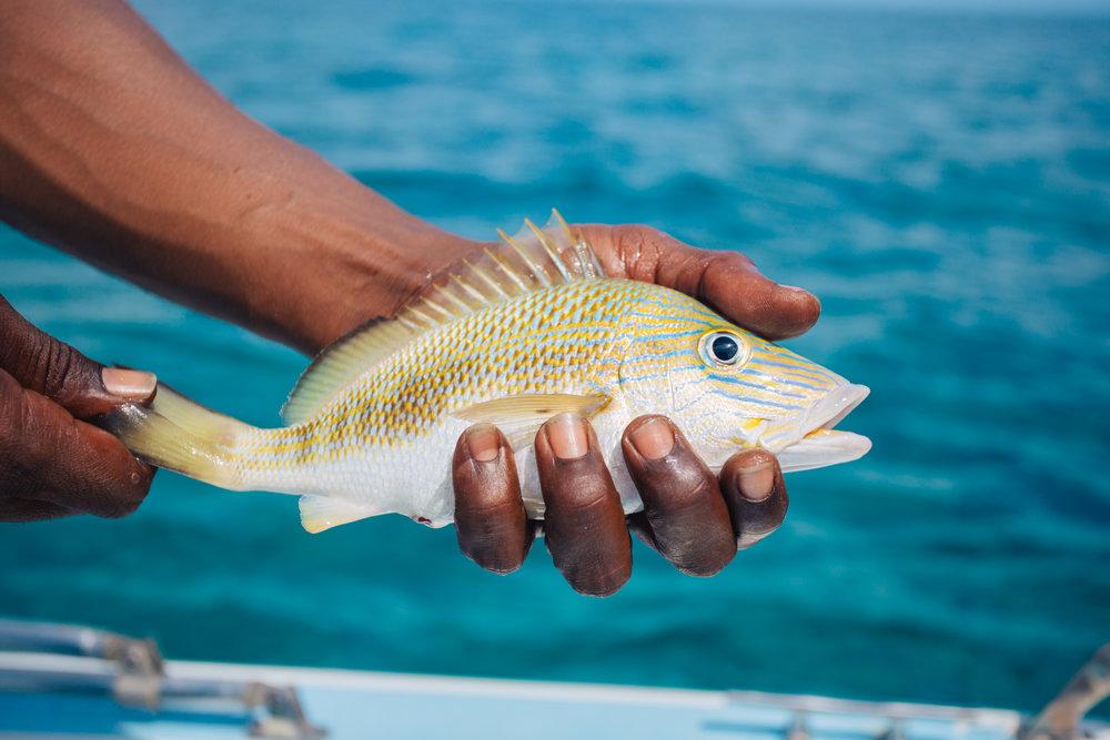 Fishing-8.jpg