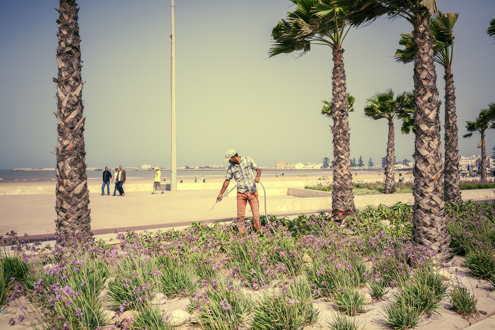 Essaouira Beach Morroco