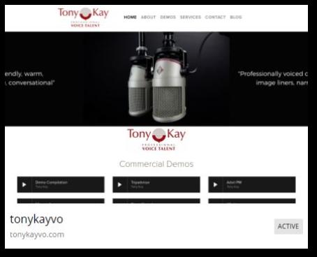Tony Kay Professional Voice Talent.png